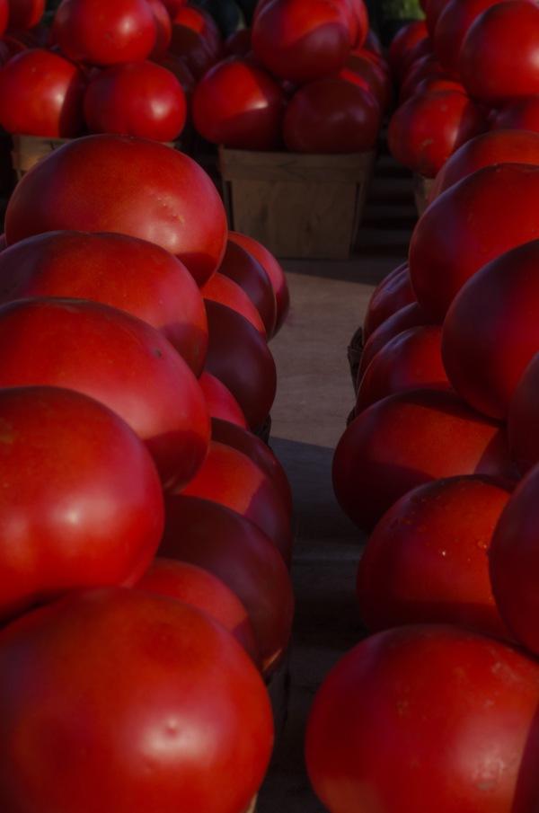 Farmers' Market Tomatos