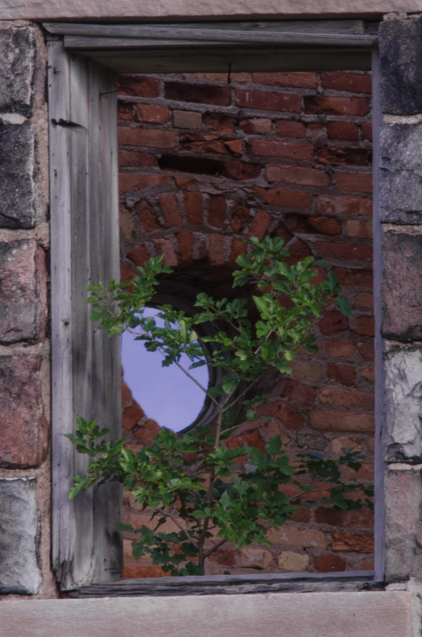 Watchtower Window