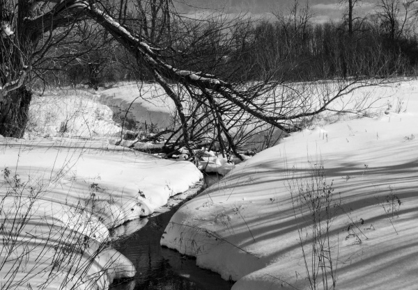 B & W of Same Stream