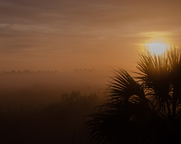 Parting Sunrise Shot :-)