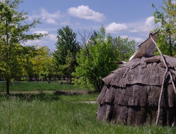Bark Hut