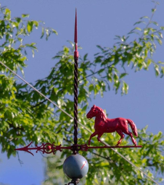 Horse Vane (and lightening rod?)