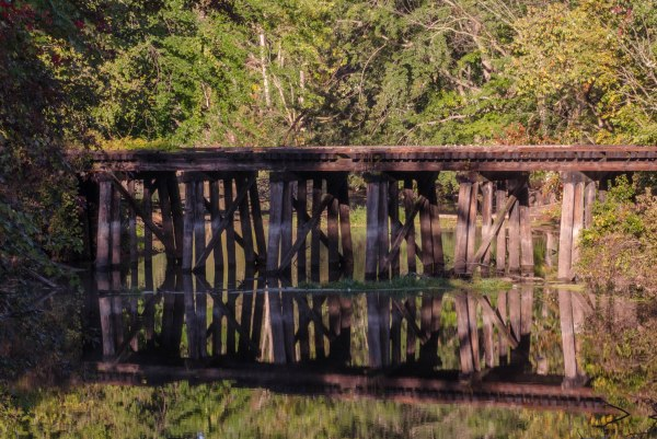 Trestle Over Water