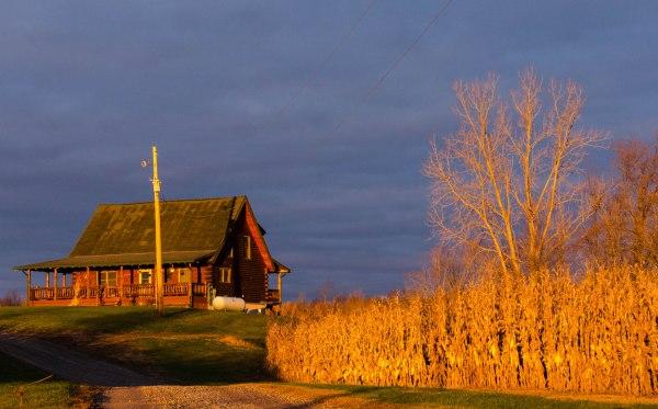 Log Cabin and Corn