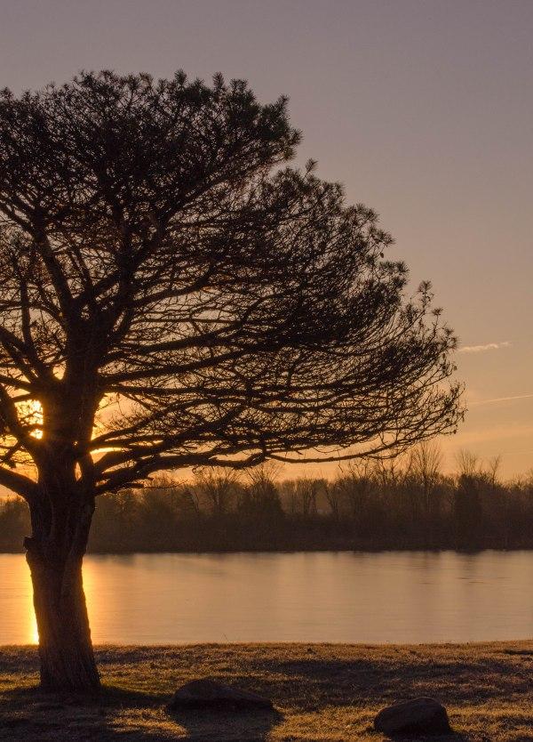 Lime Lake Sunrise