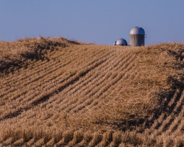 Silo and Field