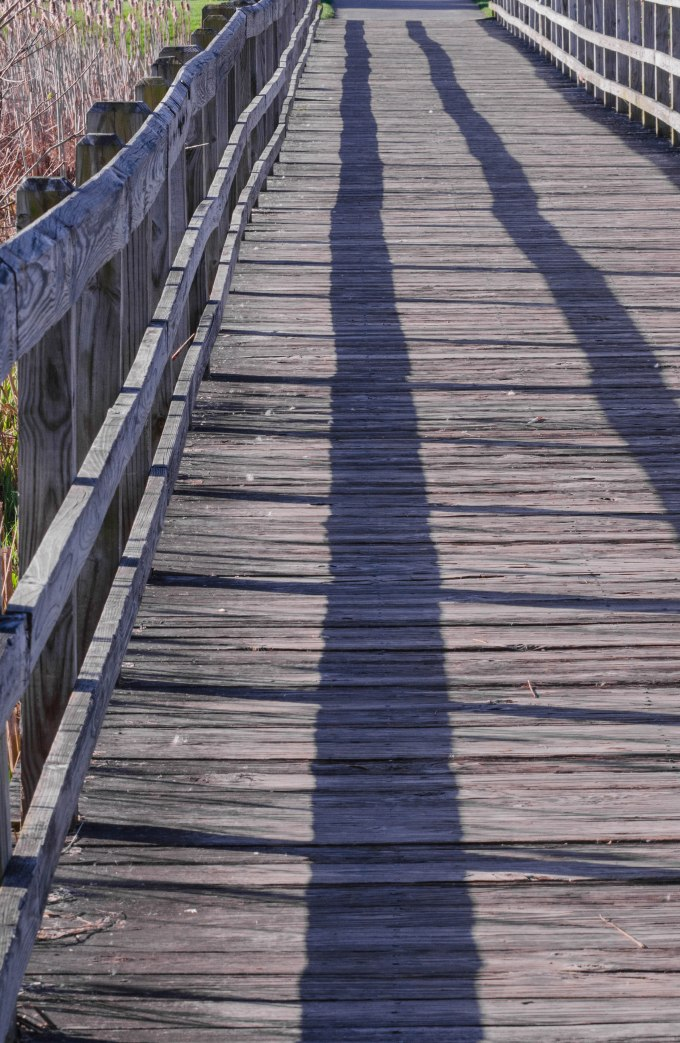 boardwalk2